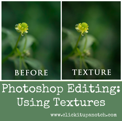 Photo editing using photoshop cs5