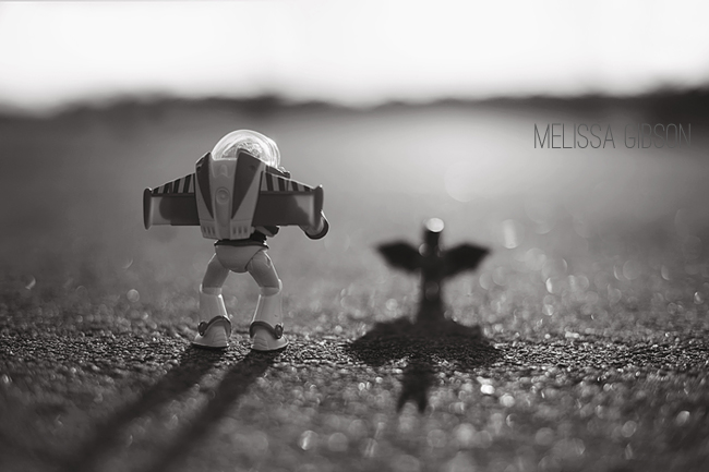 Photography Project Inspiration - The Toy Project by Melissa Gibson via Click it Up a Notch