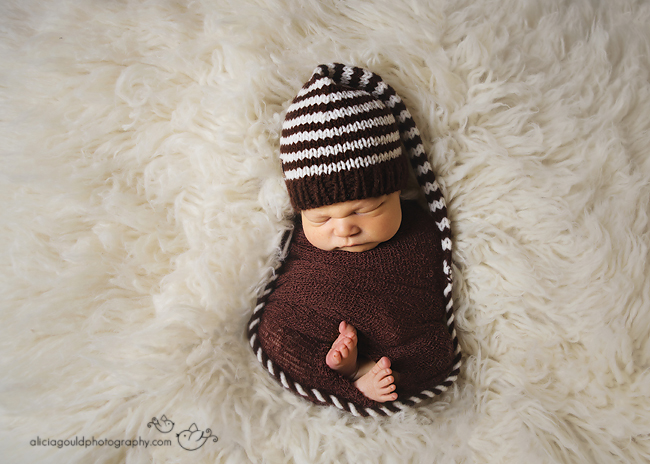 Newborn Photography by Alicia Gould 10