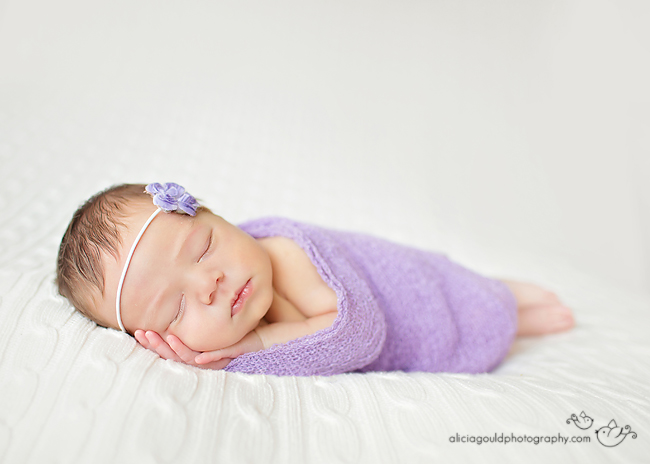 Newborn Photography by Alicia Gould 7