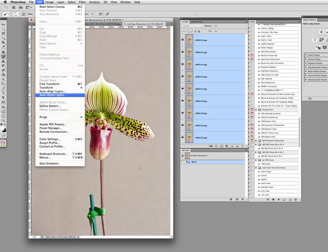 screenshot select layers