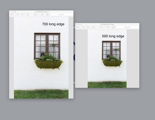 Digital Image Sizing