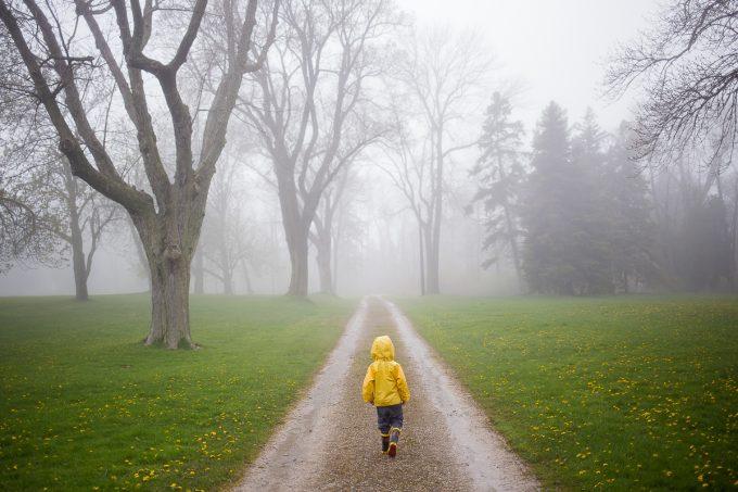 auerbach-foggy-day