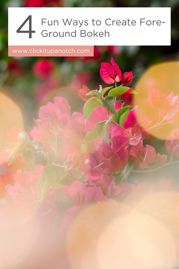 "Oh my goodness! I would have never thought of her fourth item for creating foreground bokeh. It's brilliant! Read - ""4 Fun Ways to Create Foreground Bokeh"""