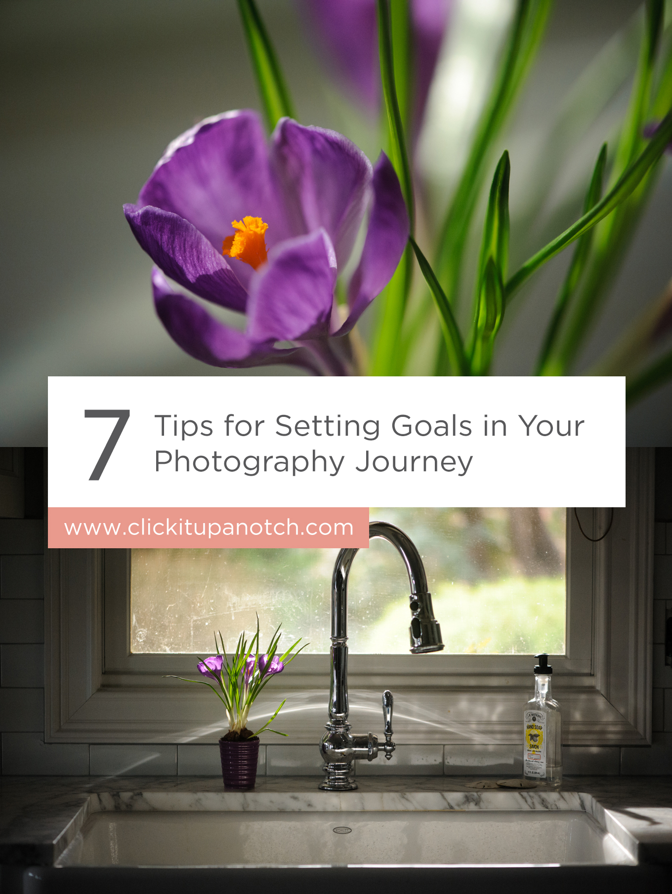 "I have so many conflicting thoughts when it comes to setting photography goals. I love her perspective. Must try! Read - ""7 Tips for Setting Goals in Your Photography Journey"""