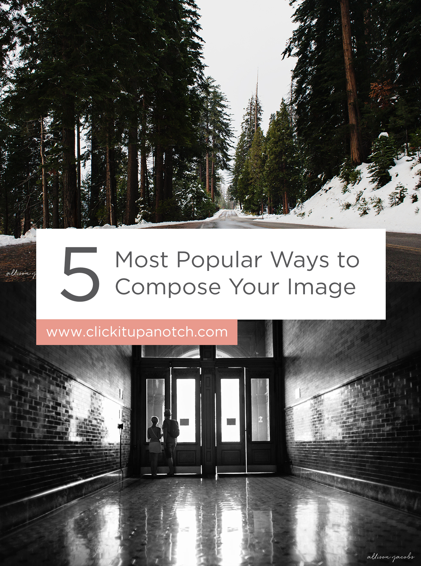 "This is a great guide for beginners learning about composition! Read - ""5 Most Popular Ways to Compose Your Images"""