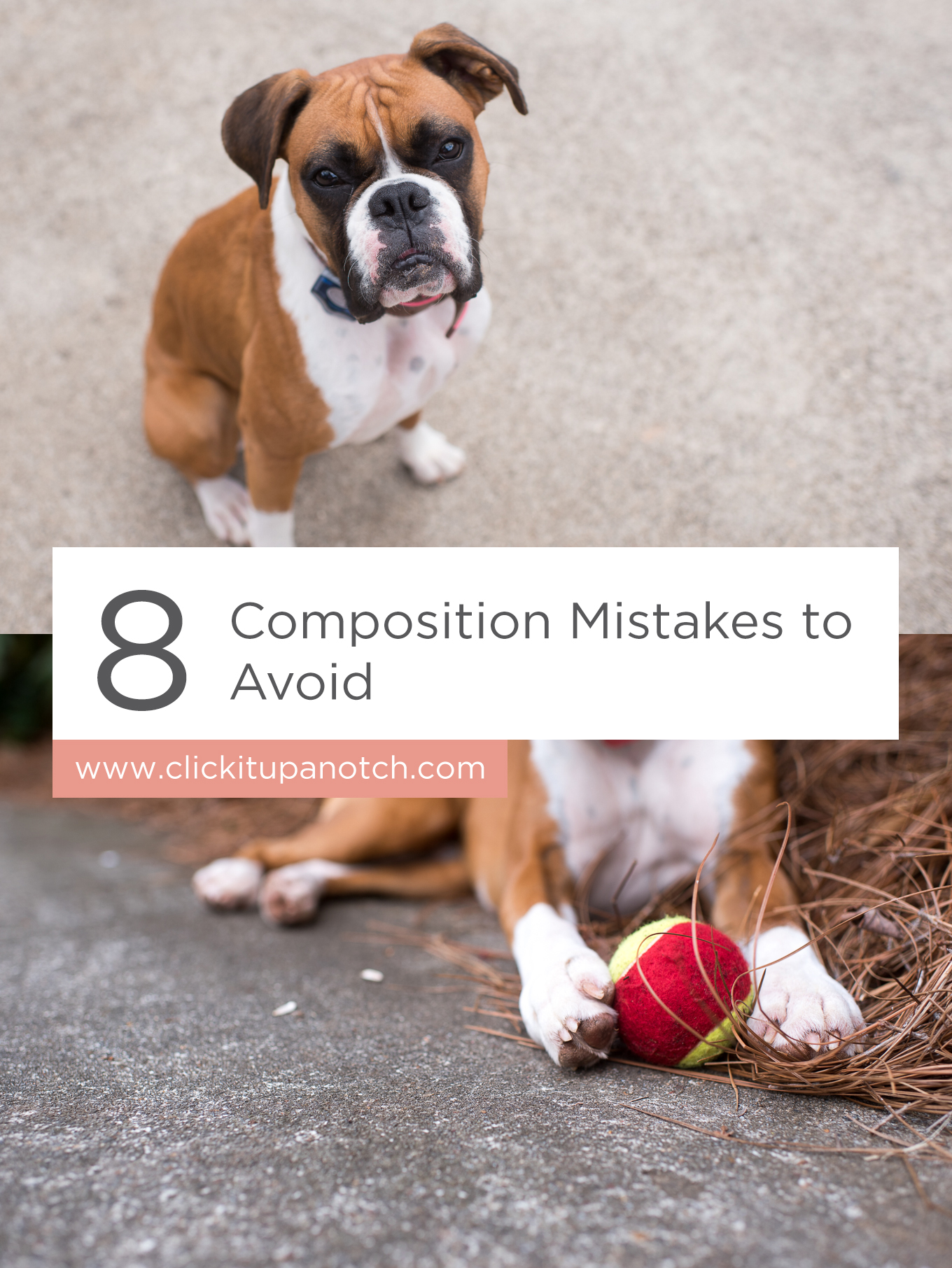 "This is a great article to bookmark if you're just starting out in photography! Read - ""8 Composition Mistakes to Avoid"""