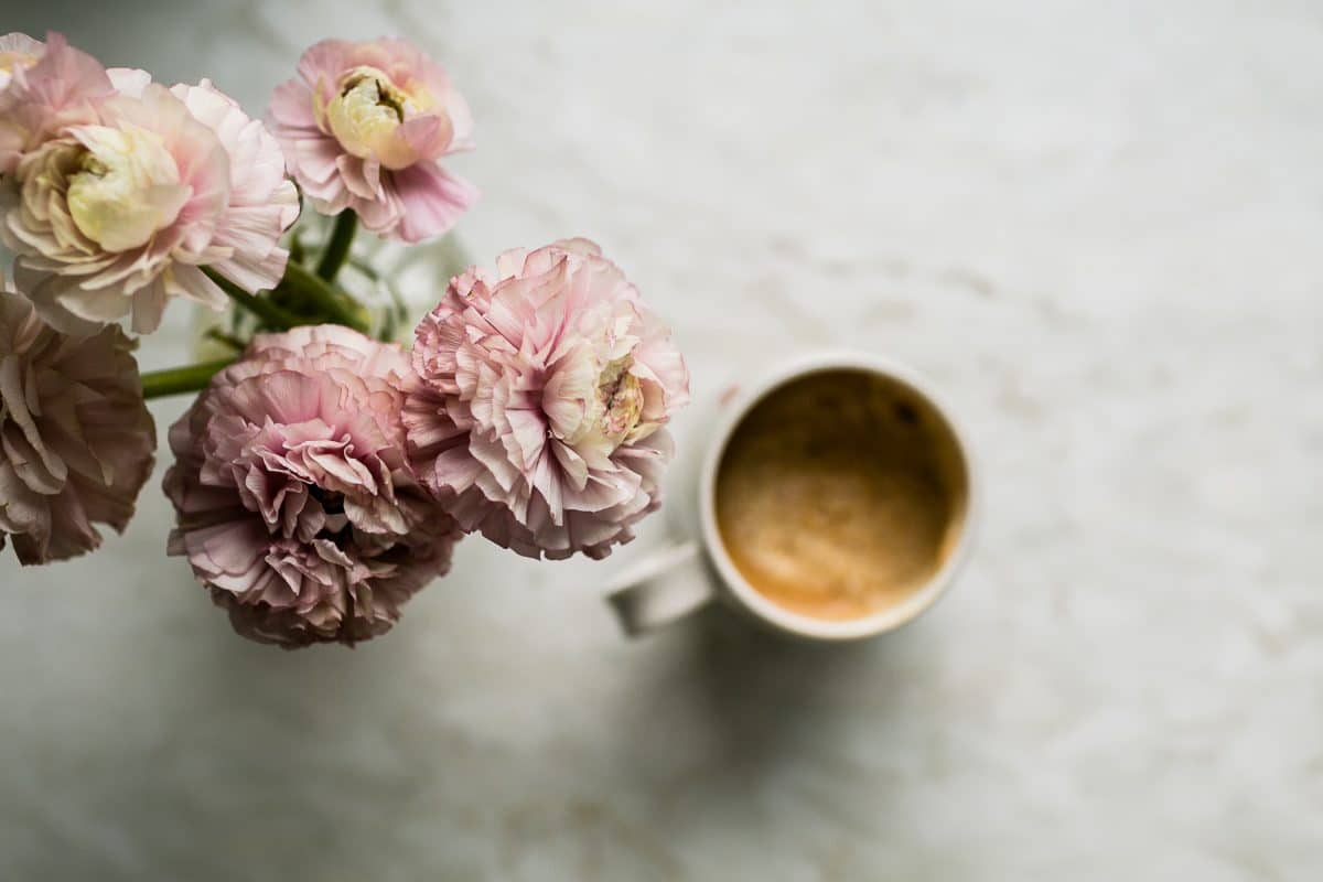 Dusty pink flowers and cream colored coffee in a still life photograph