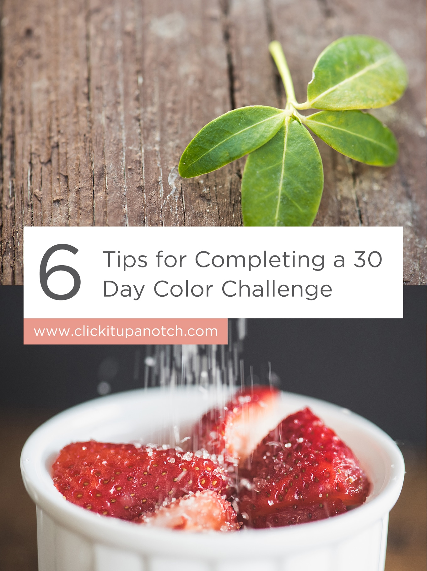 """I love the idea of a really short photography project! I has great suggestions. Read - """"6 Tips for Completing a 30-day Color Challenge"""""""