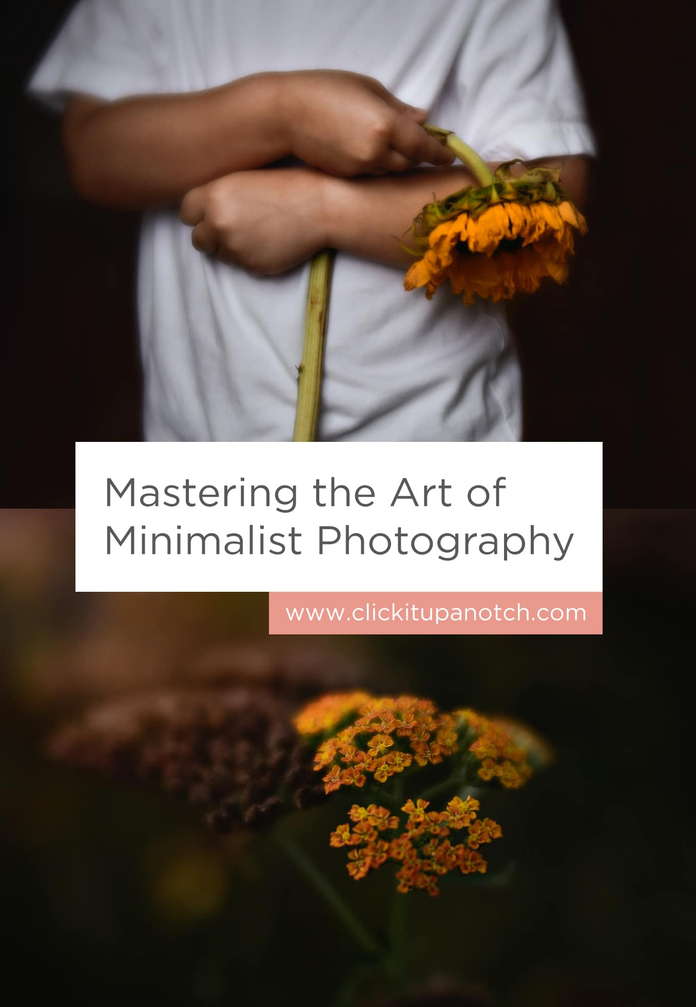 "I love the look of minimalist photography and appreciate all the examples she gave to achieve these type of images. Read - ""Mastering the Art of Minimalist Photography"""