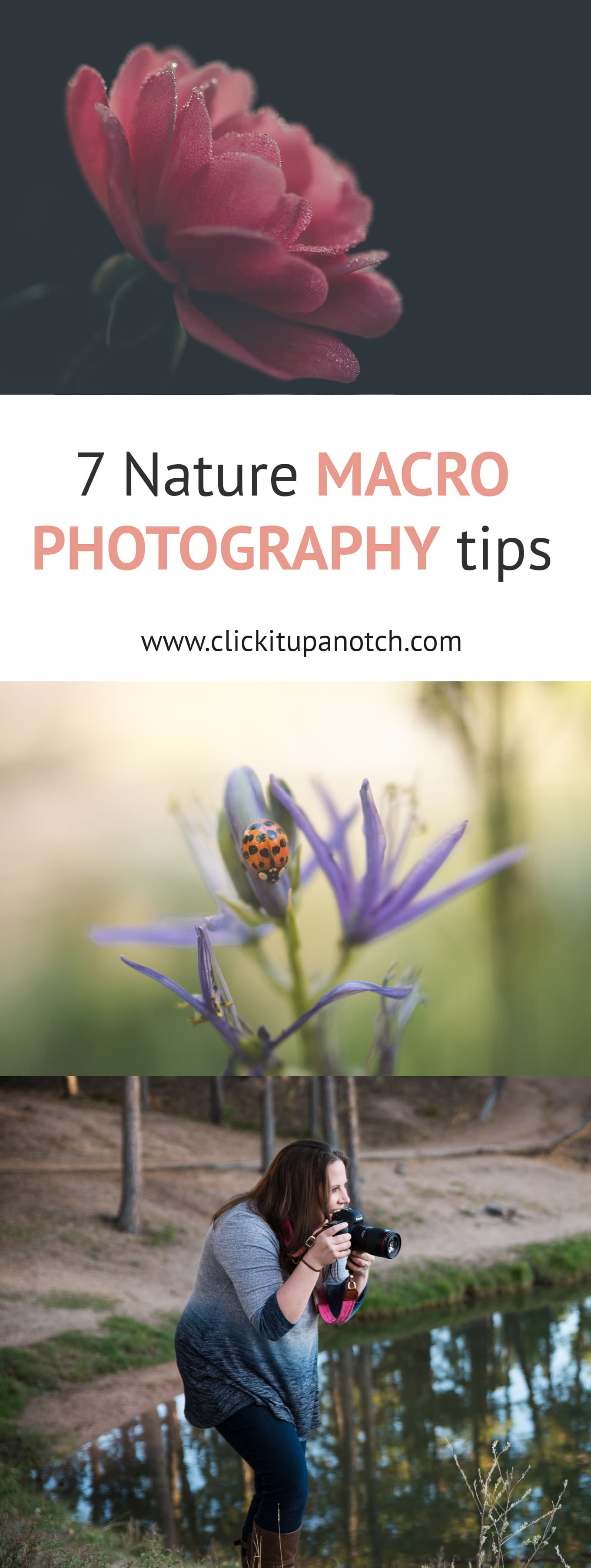 "Macro photography is hard enough indoors. Going to use these tips the next time I try macro photography outside! Read - ""7 Must Have Nature Photography Tips"""
