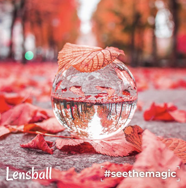 A lens ball on a concrete path with red and orange leaves surrounding it. There is a reflection of the background of rows of trees in the ball. This is a great gift for photographers.