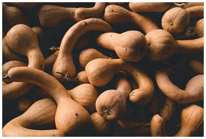 A close up shot of orange gourds to show the photography composition  rule of filling the frame.